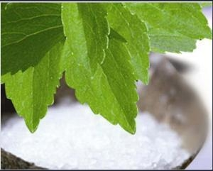 China High Quality Stevia Extract Powder 80-99% Steviosides/ 50%-99% Reb. a Natural Sweeteners No Side Eff on sale