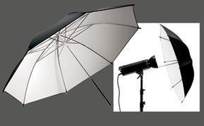 China Black&White Umbrella forStudio on sale