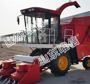 China Diesel Engine Green Corn Forage Silage Harvester on sale