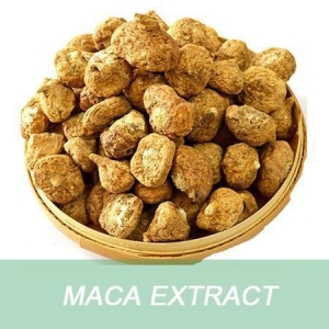 China Health and beauty product Maca Root Extract Powder for pharmaceuticals on sale