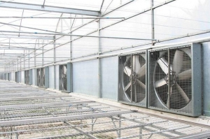 China Poultry wall mounted ventilation fans on sale