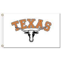 NCAA Texas Longhorns 3