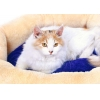 China Pet bed Model:CB-14 for sale