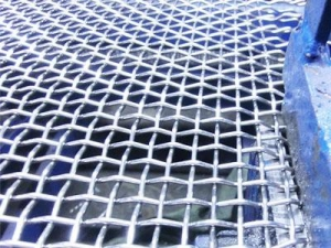 China Plain Crimped Wire Mesh supplier