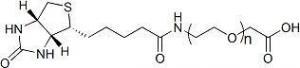 China Biotin-PEG-COOH ; Biotin-PEG-AA ; Biotin-PEG-Acetic Acid on sale