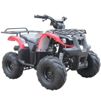 Mopeds UTILITY 110 REVERSE - Big Tire