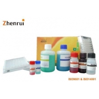 Item Name:H7 Avian Influenza Virus antibody elisa test kit