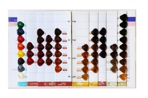 China colour chart on sale
