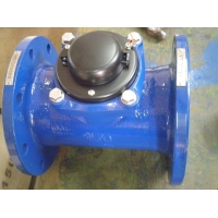 50mm Woltman Water Meter For Cold And Hot Water Removable Element Structure