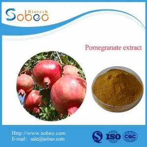 China Pure Pomegranate Fruit Flower Extract for sale on sale