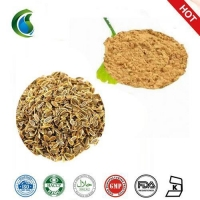 Caraway Seeds Plant Extract with Carum Carvi Extract