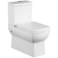 Ceramic Washdown Two-piece Toilet Sanitary Ware