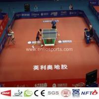 Ping Pong court mat