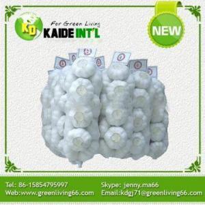 China Garlic According To Customer Needs Chinese Natural Garlic on sale