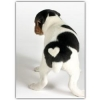 China Dogs Blank Card - Puppy w/ Heart: Wholesale Products for sale