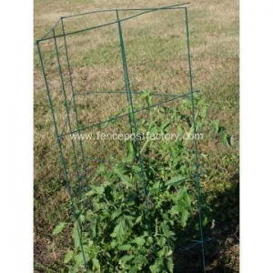 China tomato cages organic gardening on sale