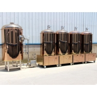 China 500L Red copper micro brewery equipment on sale