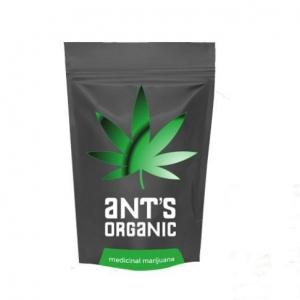 China Printed Bags/stand Up Pouch for Cannabis Packaging Bags on sale