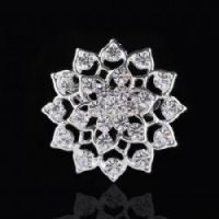 Fashion Jewelry Fbro041