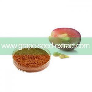 China OPC,Polyphenols, Oligomer organic grape seed extract powder on sale