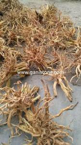 China Natural Aquarium Root Aquarium Root and Driftwood on sale