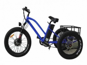 China Aluminum Alloy 3 Wheel E Bike Trike Fat Tire Electric Tricycle with Passenger Seat for sale on sale