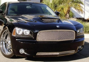 China T-Rex Upper Class Series Mesh Grille Inserts on sale