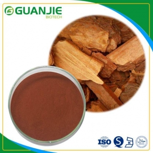 China Pine Bark Extract Proanthocyanidins 95% Tested by UV Sample Free with the Best Quality on sale