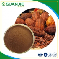 Cocoa Extract High Quality Pure Natural Cocoa Bean Extract with Best Quality