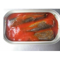 chinese canned jack mackerel fish in tomato sauce
