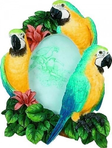 China Bird Picture Frame - Macaw on sale