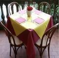 China pre-cut tnt nonwoven cloth Table cloth on sale