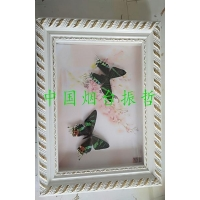 Edible Insects Butterfly arts and crafts1