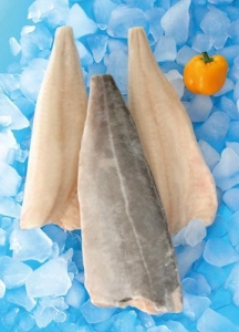 China Atlantic saithe IQF Light Salted Saithe Fillet on sale
