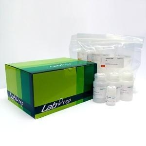 China LabPrep Viral DNA/RNA Extraction Kit on sale