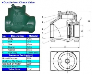 China Oil Pipe Products Ductile Iron Check Valve on sale
