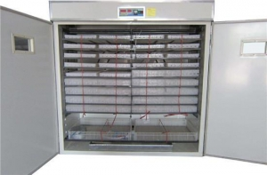 China Poultry Egg Incubator Equipment on sale