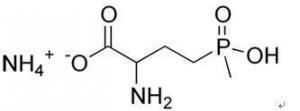 China Agrochemicals Glufosinateammonium on sale