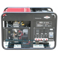 10kw 12KVA Briggs and Stratton portable gasoline generator machineInquiry