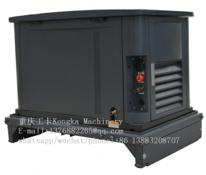 China 14kw 17kva NG/LPG fuel standby electric generator setInquiry on sale