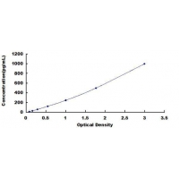 Human FMS Like Tyrosine Kinase 3 Ligand (Flt3L) ELISA Kit
