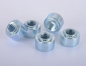 China Stainless Steel Clinch Nuts on sale