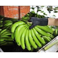 China Imported fruit Imported fruit on sale