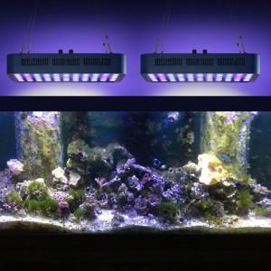 China 165W Full Spectrum LED Aquarium Bar Light on sale