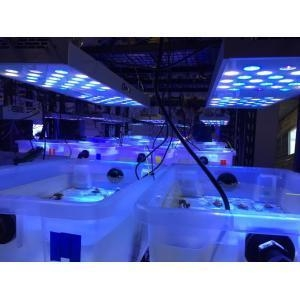 China LED Lights for Growing Coral in Marine Aquarium on sale