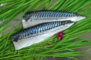 China Uncooked Foods Vinegar mackerel slices on sale