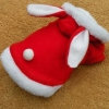 China Bunny Ear Puppy Costume for sale