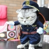 China Policeman Puppy Cats Costume for sale