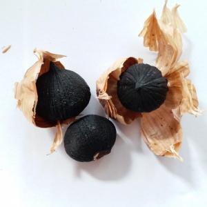 China Chinese High Quality Single Head Black Garlic on sale