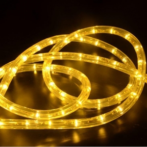 China LED Rope Light Color Changing LED Rope Lights Outdoor on sale